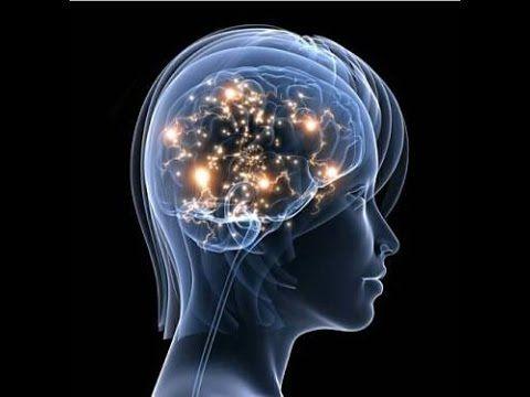 Wunscherfüllung,Reality Creation: Die Energie der Aufmerksamkeit durch e...