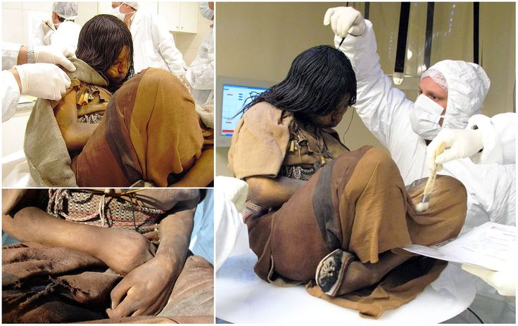 "Photo of the ""Llullaillaco Maiden"", a 15-year-old girl sacrificed during the Inca Empire for both purposes of religious rite and social control. She was chosen a year prior to her death, fed a ritualistic diet for an approximate twelve months to make her gain weight, then was drugged and left on the shrine at Volcano Llullaillaco, where she was left to die of exposure. For 500 years, her body had been preserved at 82 ft. She is considered to be the best preserved Andean mummy ever."