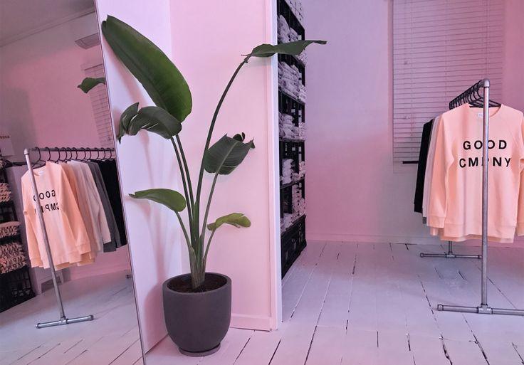 Good Cmpny Showroom and Pop-Up - Broadsheet