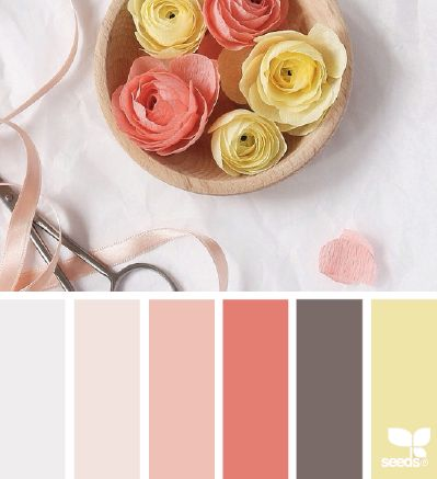 #Farbbberatung #Stilberatung #Farbenreich mit www.farben-reich.com ❤ =^..^= ❤   petaled paper