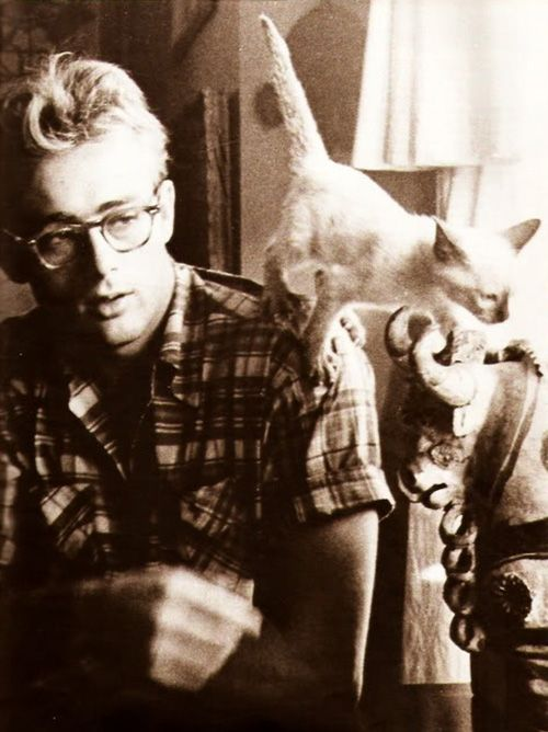 James Dean and his cat Marcus, 1955