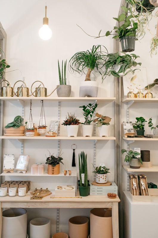 decorating with plants   inspiring interior of folia in pasadena. / sfgirlbybay
