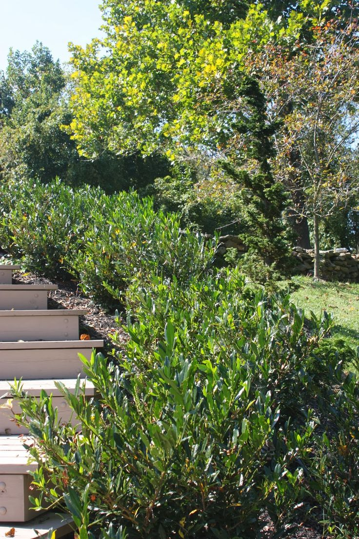 How To Make Home Landscaping A Great Deal Easier