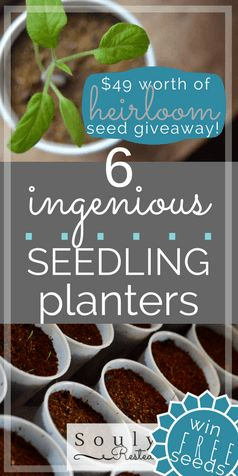 ingenious seedling planters | gardening with kids | seeds | planting with seeds | starting your garden indoors | heirloom seeds | use things around the house for creative planters | Baker Creek Heirloom Seeds | Giveaway | free seeds | free planters