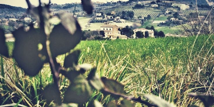 Riviera del Conero - Camerano - Italy  Discovering unknown villages Little town of san Germano in central Italy with amazing artisanal brewery.  san-germano-agricultural-beer