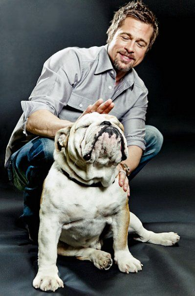 Brad Pitt and his bulldog