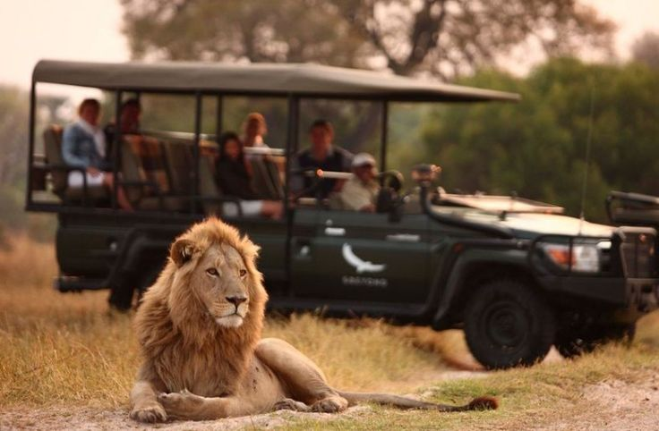 10% off 15-day tour ➡Treat the whole family to the trip of a lifetime! Luxury lodges in the African wilderness paired with the cosmopolitan city of Cape Town 🌍  📍 Victoria Falls  📍 Okavango Delta  📍 Sossusvlei Desert   📍 Cape Town  Contact us to make the dream a reality 📧📞