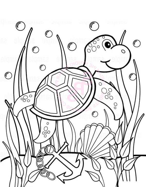 Under the sea coloring pages sea turtle anchor seaweeds
