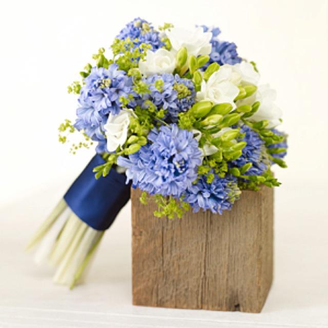 Hyacint, fresia och daggkåpa
