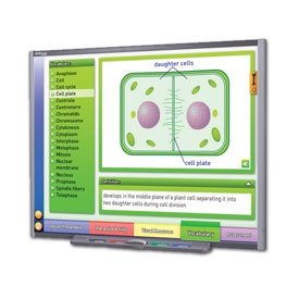 Mitosis: Cell Growth & Division Multimedia Lesson