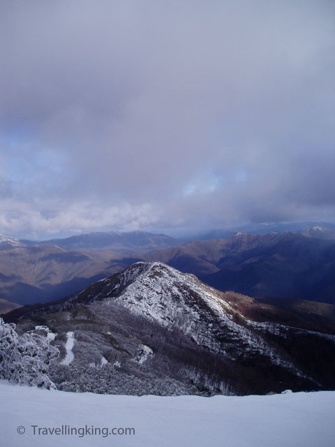 Mt Buller (PHOTO BLOG) - Travelling King