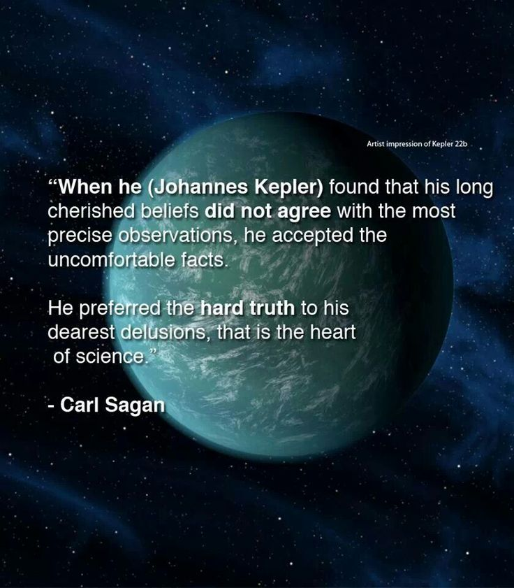 Carl Sagan Love Quote Pleasing 53 Best Carl Sagan Images On Pinterest  Carl Sagan Science And