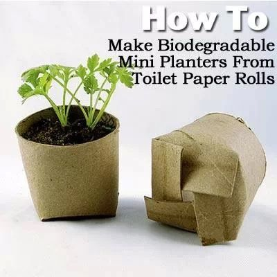 17 Best Images About Ecology Containers Bags On 400 x 300