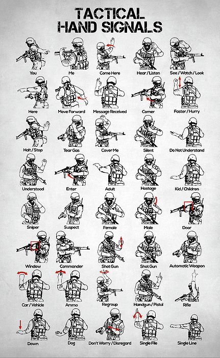 tactical hand signals, swat hand signals, visual signals, combat formations, battle, hand and arm signals, survival, military training, zombie apocaly…