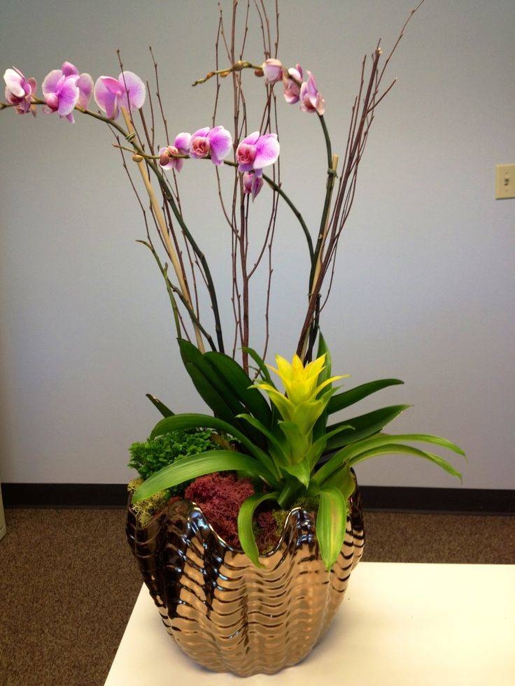 Best images about orchid decorations on pinterest