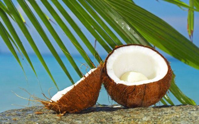 Superfood Spotlight: Coconut