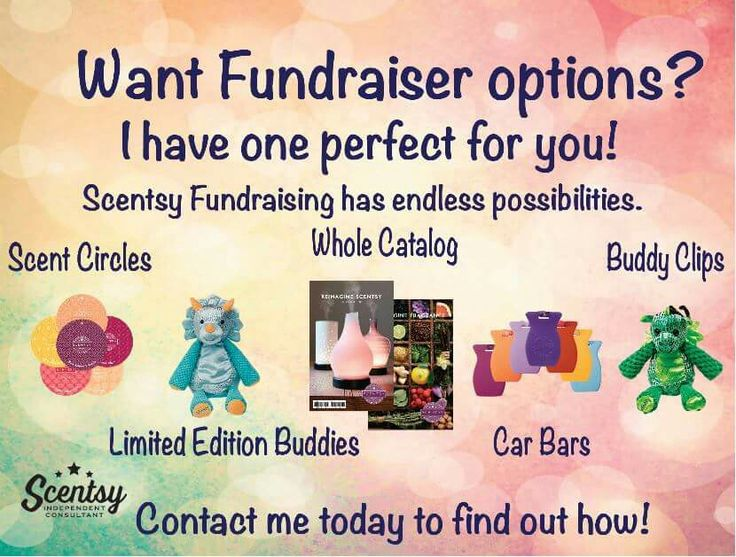 pin by lauren kety on scentsy fundraisers