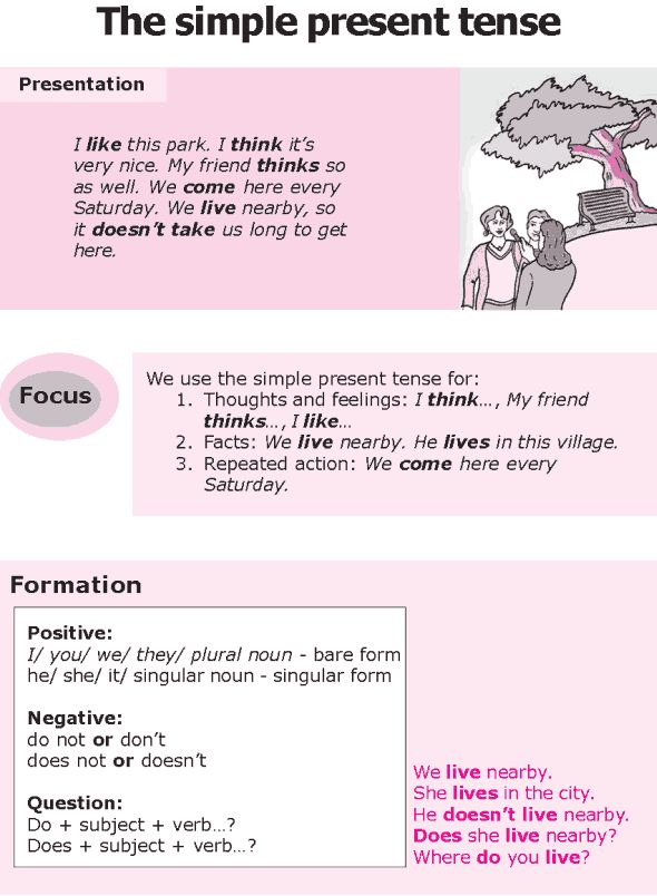 Grade 8 Grammar Lesson 1 The simple present tense