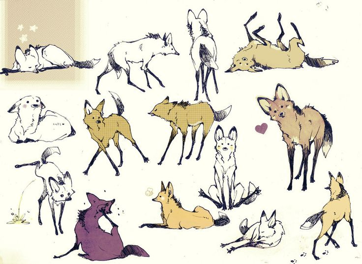 A lot of Maned Wolf by Loputyn.deviantart.com on @deviantART || CHARACTER DESIGN REFERENCES | Find more at https://www.facebook.com/CharacterDesignReferences