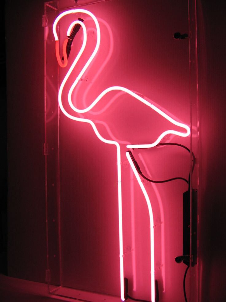 pink flamingo neon light really want to get this for my mom for the beach house