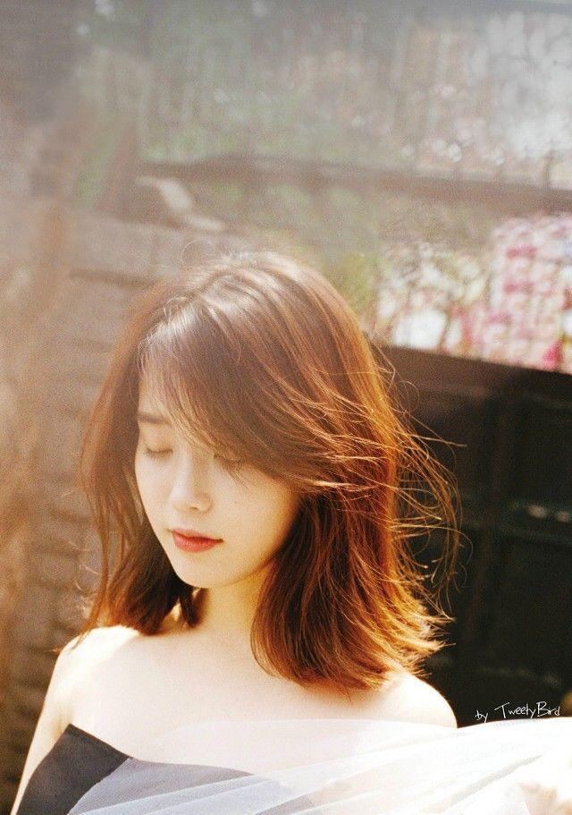 IU short hair                                                                                                                                                      More
