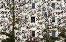 La rivincita delle bici