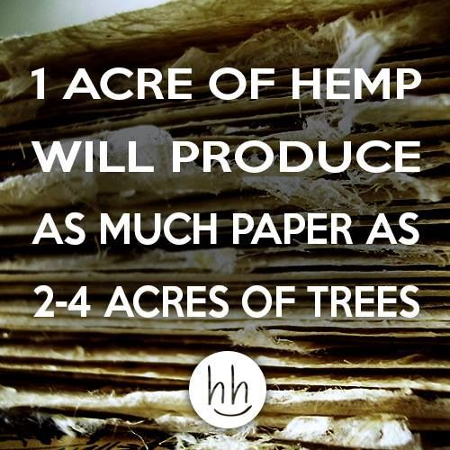 Hemp will grow back in 90-120 days, while trees take years to grow back in order for them to be used industrially.