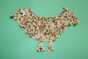 bird seed craft  put this on tag board and frame it with sticks or nest type material