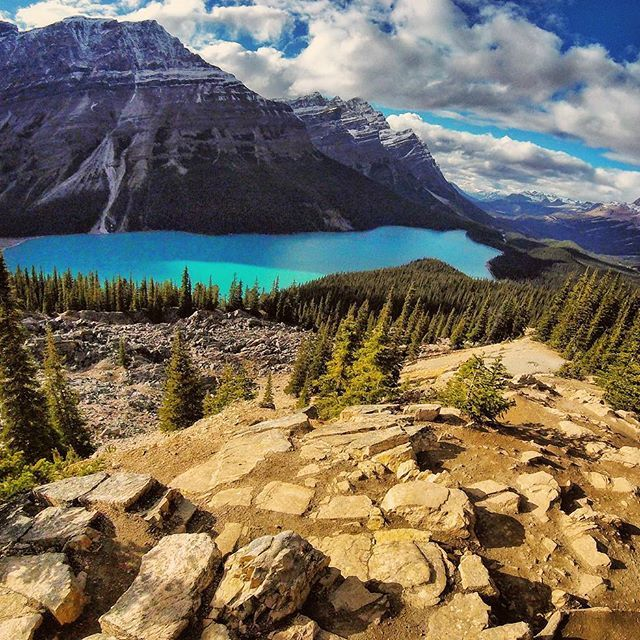Have to make a trip back to Peyto Lake now that we have snow flying! I bet this entire scene has changed in the last 72hrs.  #feelsalive  @keencanada @revo @edgetvnetwork