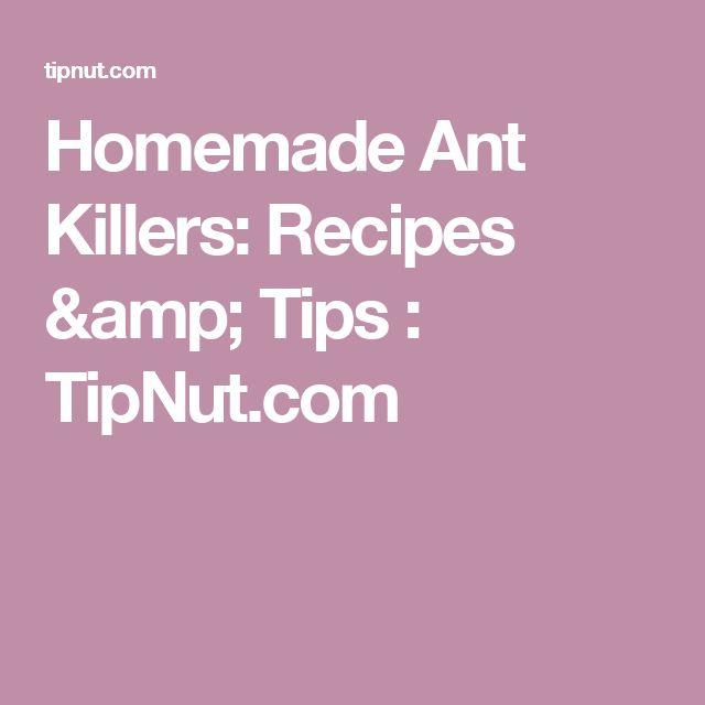 Homemade Ant Killers: Recipes & Tips : TipNut.com