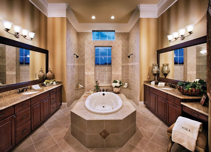 Master bath walk in shower spacious dalenna master for Florida bathroom ideas