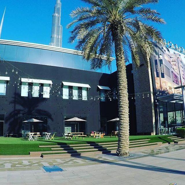Easigrass at the Nshama Sales office Downtown Dubai on Sheikh Mohammed Bin Rashid Blvd.  #seemycity #theimaged #fatalframes #yngkillers #visualmobs #heatercentral #streetmobs #illgrammers #streetdreams #visualmobs #1stinstinct #streetdreamsmag #streethype www.easigrass.ae