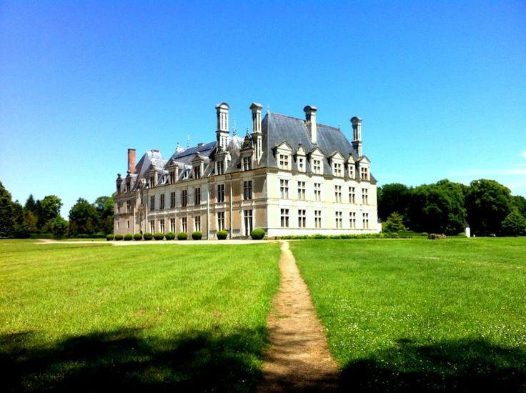 Château de Beauregard vu de la forêt
