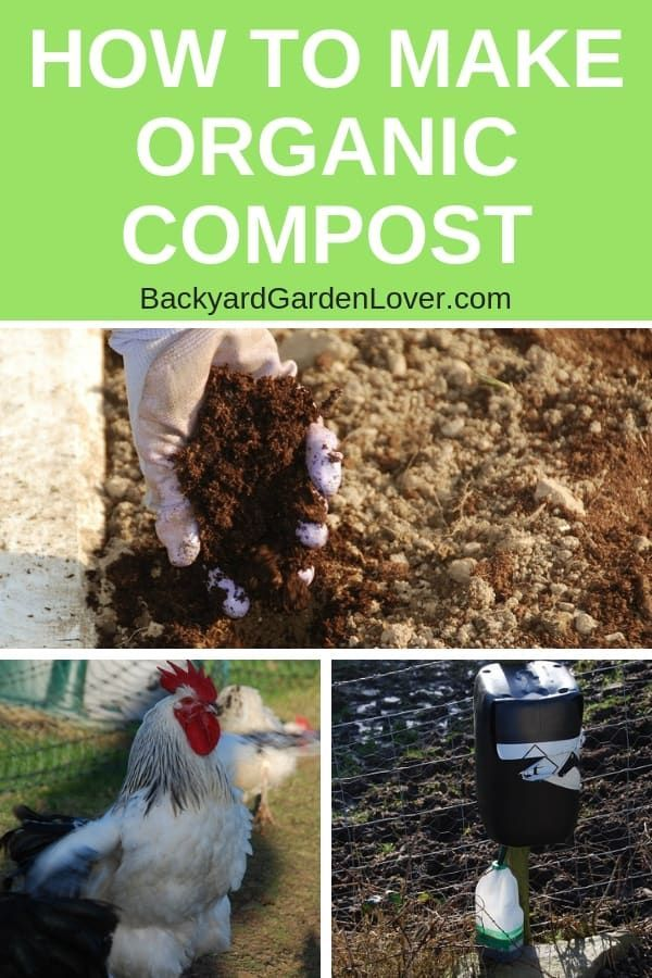 How To Make Organic Compost At Home For Better Vegetables
