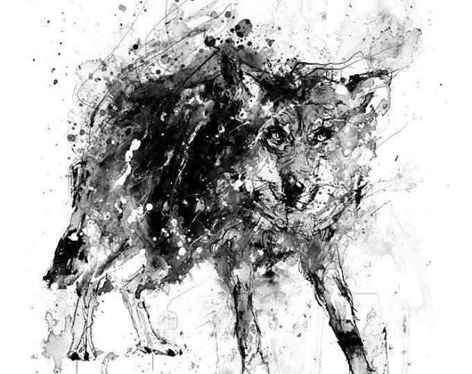 Schwarzer Wolf, Schwarzweiß drucken, Freihandzeichnung, Kunst, Ink Splatter, wilde Art, schwarz-weiß-Tier, Wolf-Print, Wolf Wandkunst, S / W