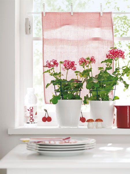 Minhas cortinas da cozinha