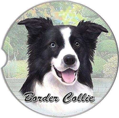 1047 Best Border Collie Iv Images On Pinterest Border Collies