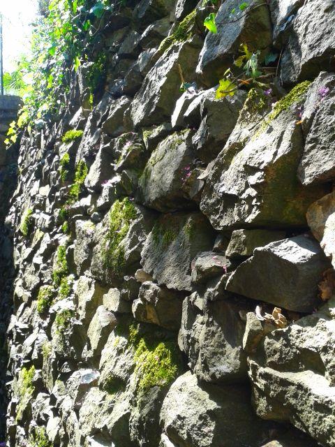 muro a secco delle cantine di cima
