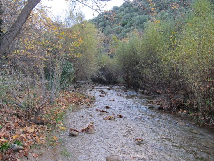 Nearby river