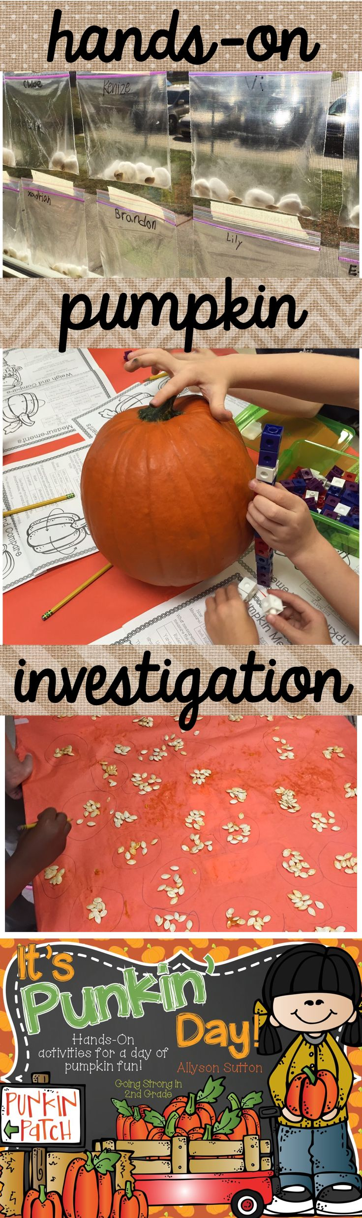 """It's Punkin' Day!"" Hands-On Pumpkin Investigation & Language Arts activities for Pumpkin Week!"