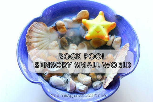 Rock Pool Sensory Small World Play & Sharing a Shell - The Imagination Tree