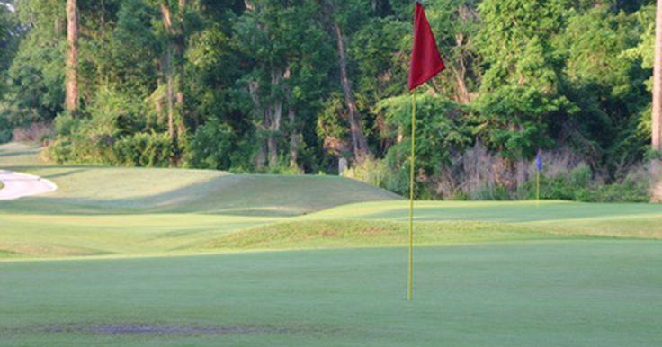 ¿Qué significa el punto de color en los hierros de golf Ping?. Cada hierro de golf Ping tiene un punto de color que personaliza los palos para cada golfista. Tradicionalmente, un golfista iba a comprar un juego de palos de golf y trataba de cambiar su swing para acomodarse a los nuevos palos. El golf es un juego difícil y adaptar tu swing a los nuevos palos hace que sea aún más difícil. Los hierros Ping son ...