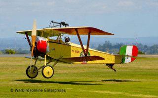 Nieuport 11 Tauranga Airshow 2014