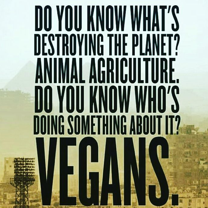 If you eat meat eggs and dairy you are supporting one of the most environmentally destructive industries in the world. Causing more damage and destruction than anything else known.