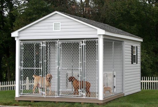 Now that is a dog house