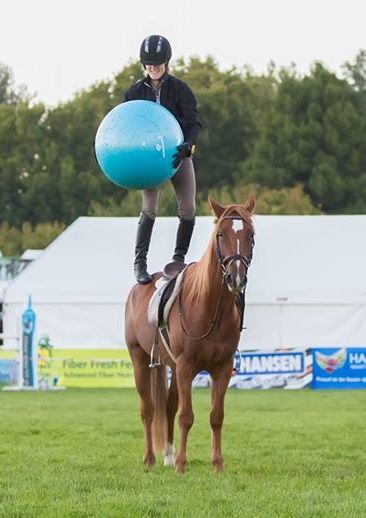Chloe Phillips Harris And Phoenix Competing At Horse Of The Year Kaimanawa Stallion Makeover
