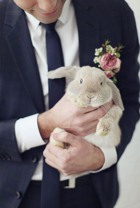 Groom with Bunny Ways to Include Your Pet in the Wedding | Brides.com