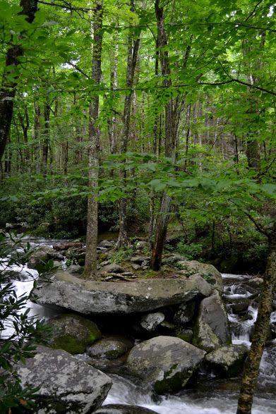 Great Smoky Mountains National Park,  Tennessee (Национальный Парк Грейт-Смоки-Маунтинс, Теннесси)