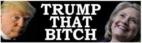 Trump that Bitch  Anti  Hillary Political by BaysideDecalshop