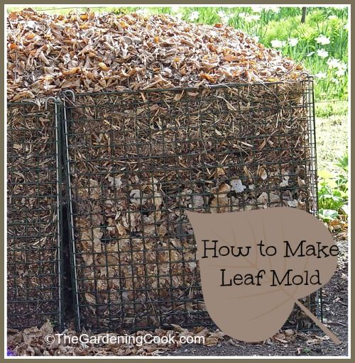 Leaf Mold - Nature's Natural Soil Additive - Don't waste those leaves!  http://thegardeningcook.com/
